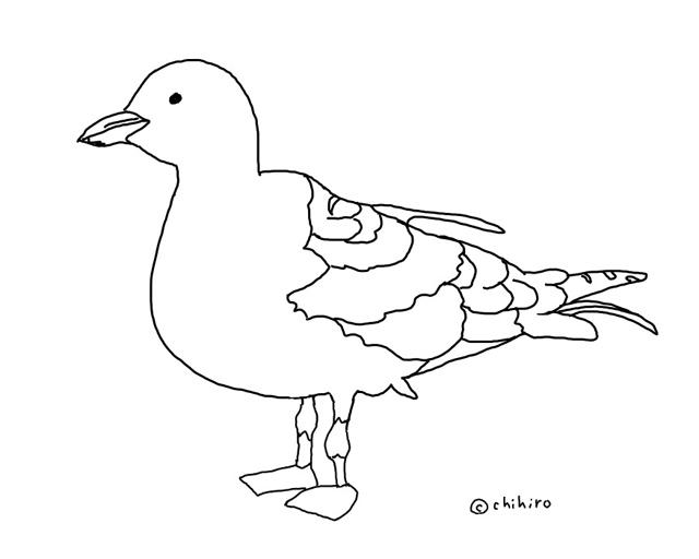 iPad Pro イラスト鳥